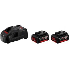 Batteries 2 pcs-5ah + charger - gal 1880 hp 18v - naked
